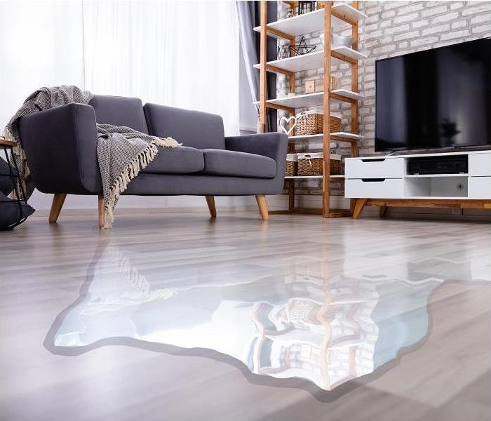 water pooling on living room floor