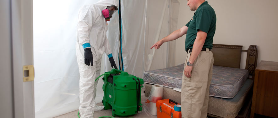 Seminole, FL mold removal process